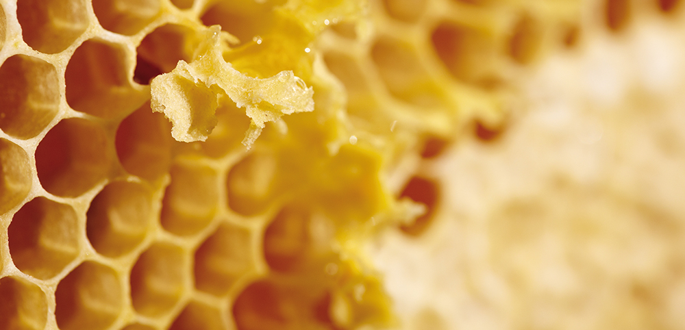 beeswax, skin compatibility, natural bounce, natural ingredients, essential, natural haircare, quality